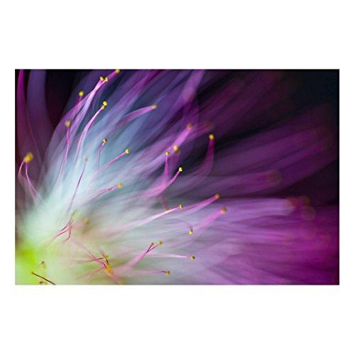 Bilderwelten Magnettafel - Blütenstaub - Memoboard Quer 2:3 Wandbild Magnettafel Pinnwand Magnetboard Magnetpinnwand Magnetwand Stahl Küche Büro, Größe HxB: 40cm x 60cm