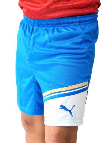 PUMA Herren King Shorts with inner slip puma royal-white
