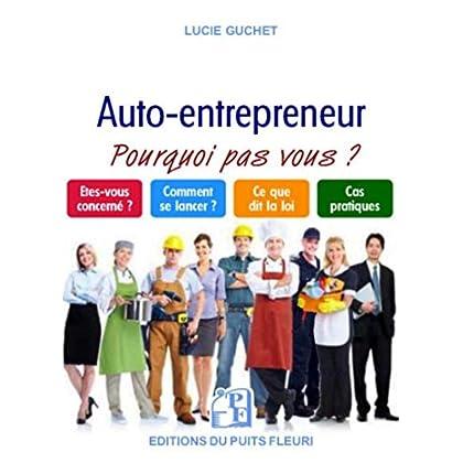 Le nouveau micro-entrepreneur - ou autoentrepreneur - Et si c'était vous !: Êtes-vous concerné ? Comment se lancer ? Ce que dit la loi ? Cas pratiques ?
