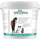 IdaPlus - Kieselgur forte 2 kg |