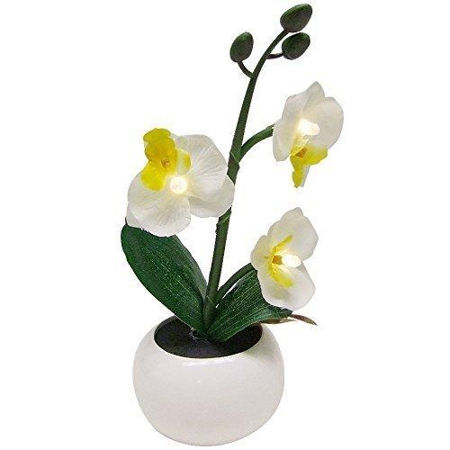 Kunstpflanze Originelle Dekoration mit violettfarbenen Orchidee