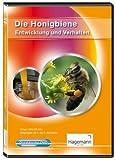 Die Honigbiene - Entwicklung und Verhalten - DVD mit Film und digitalen Tafelbildern für PC, Beamer und Whiteboard - Hagemann 180610 - Einzel- und Schullizenz