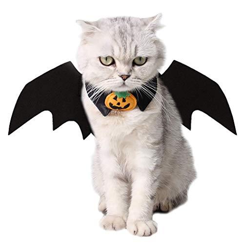 Katze Kostüm Eine Halloween - VIKEDI Katze Kleidung, Halloween Katze Kleidung Katze Fledermaus Kostüm mit Katze Kragen Fliege für Halloween Party Cosplay Dekoration,Einstellbare Größe