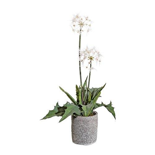 Kunstpflanze Pflegeleicht