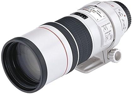 Canon EF 300 MM F4L IS USM - Objetivo para cámaras Canon (8 hojas de diafragma, 0,24 aumento máximo, 77 mm diámetro del filtro), blanco