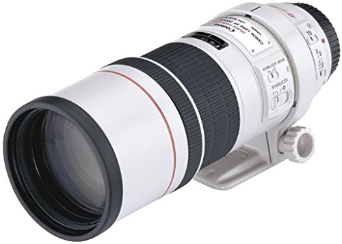 Canon EF 300mm 1:4,0 L IS USM Objektiv (77 mm Filtergewinde) (300 Objektiv Canon)