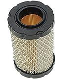 Motor De Filtro De Aire Limpio Para Briggs 796031 594201 John