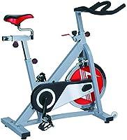 Skyland Spin Bike - EM-1552 (Multi Color)