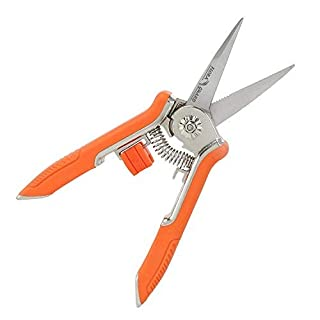 FLORA GUARD 6.5 Inch Micro-Tip Pruning snip Gardening Hand Pruning Shears Trimming Scissors with Stainless Steel(Orange)