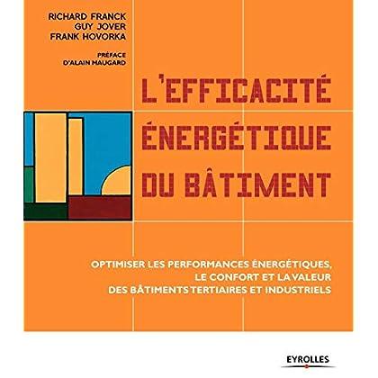 L'efficacité énergétique du bâtiment : Optimiser les performances énergétiques, le confort et la valeur des bâtiments tertiaires et industriels