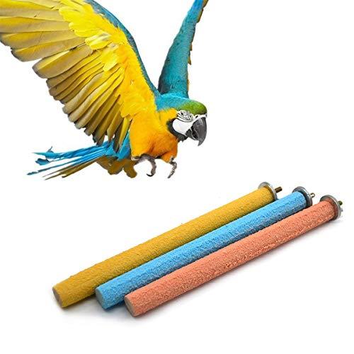 1 Paquet Pet Perroquet Cage Tige À Mâcher Cage À Oiseau Jeu Stand Perches Swing Jouet Chaîne Bar Morsure, Patte Grind Rod Toy (Corlor Aléatoire)