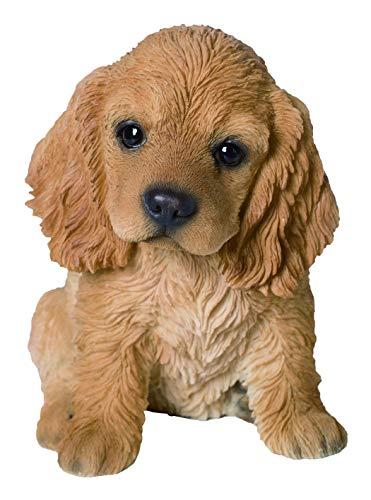 M.E.G Cards & ‿Gifts Vivid Arts - Pet Pals Golden Cocker Spaniel Puppy Décoration de Maison ou de Jardin (PP-COSP-F)