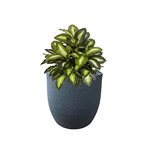 YUCCABE FOXB P cup Grey 12 Inches Planter