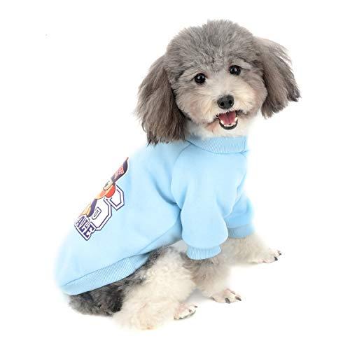 Zunea Pullover für Kleine Hunde, Jungen, Mädchen, Winter, warme Baumwolle, gepolstert, Sweatshirt für Welpen, Haustiere, Jacke, Sport-T-Shirt für Kaltes Wetter -