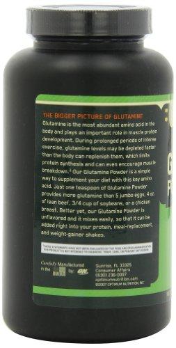 Optimum Nutrition (ON) Glutamine Powder - 300 g