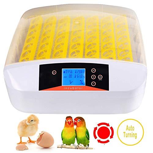 Pujuas Inkubator Vollautomatische 56 Eier digitales Brutkasten Brutapparat