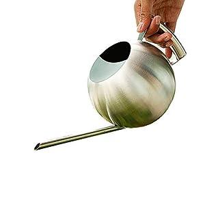 Homeofying Edelstahl-Gießkanne mit langem Ausguss, 1 l, für Sukkulenten, Blumen, Gießkanne für den Innen- und Außenbereich