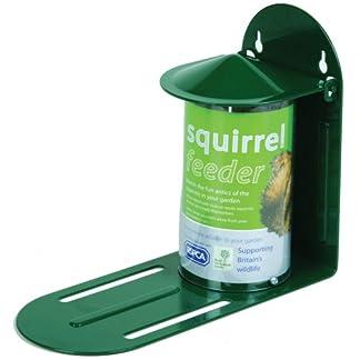 C J Wildbird Foods Cj Squirrel Feeder Green Metal C J Wildlife Squirrel Feeder Green Metal 41miBF1aMOL
