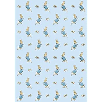 Beatrix Potter Peter Rabbit Sheet of Gift Wrap and Gift Tag