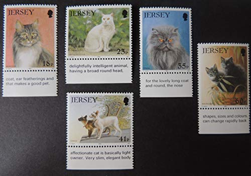 Jersey 1994 Cat Club set of 5 values SG650-654 u/m (see scan, these are the stamps you will receive) animals cats siamese persian shorthair maine coon JandRStamps