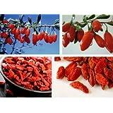 L'Himalaya Bio Goji 200g Pure naturelle Nourriture