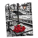 Alcoa Prime Unframed Painting By Numbers Canvas Art Pictures for Living Room Red Rose