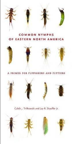 Common Nymphs of Eastern North America: A Primer for Flyfishers and Flytiers (Keystone Book) (Keystone Books)