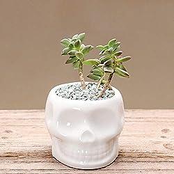 WWTYKQSG De cerámica blanca
