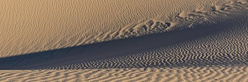 The Poster Corp Panoramic Images - Sand Dunes in a Desert Eureka Dunes Death Valley National Park California USA Kunstdruck (15,24 x 45,72 cm) -