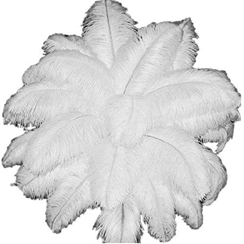 ERGEOB Natural 25-30cm/ 10-12 Zoll weißen Straußenfedern für Karneval Rosen Montag Halloween Fest Basteln Bedarf Weiß 20 stück