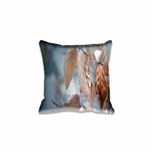 Shabby Chic Pillow case/Copricuscini e federe Cotton
