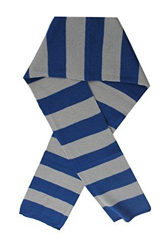 t0203165cm lang blau und grau gestreift Schal Perfekte Kostüm Zubehör für Assistenten Fancy Kleid (One Size) (Assistent Kostüm Damen)
