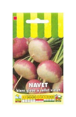 Les Graines Bocquet - Graines De Navet Blanc Globe À Collet Violet - Graines Potagères À Semer - Sachet De 5Grammes