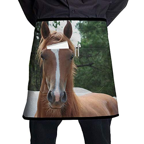 EEYLOBT apron Unisex Palimino Quarter Horse Half Waist Apron with Pocket Kitchen Cooking Restaurant Half Bistro Aprons for Chef, Baker, Servers, Waitress, Waiter