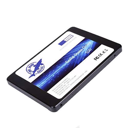 Dogfish SSD 1TB SATA3 2.5 Inch Unidad Estado sólido