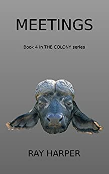 Meetings: Book 4 in THE COLONY series by [Harper, Ray]