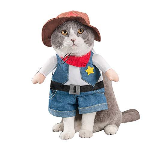 Alexsix Haustiere Kleidung, lustige chinesische Prinzessin Cosplay Kleidung für Katzen Hunde Halloween Weihnachten Kostüm Katzen Kleidung (Mini Dackel Kostüm)
