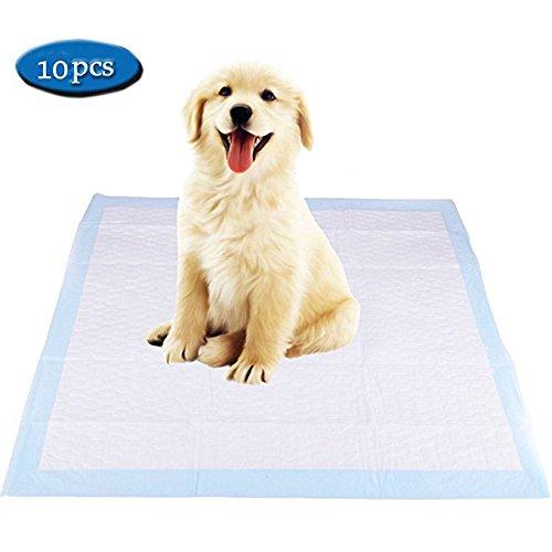DONO Puppy Dog training Pads super assorbente Dog pee tappeti Pet House training Pads 10PCS confezione