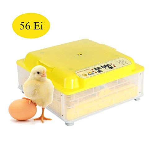 Cocoarm Inkubator Vollautomatische Brutmaschine 56 Eier Intelligentes digitales Brutmaschine Temperaturregelung für 56 Hühnereier