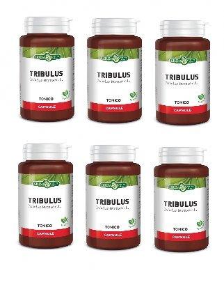 ERBA VITA - TRIBULUS TERRESTRIS 6 CONFEZIONI DA 60 CPS DA 500 MG - azione tonica e di sostegno metabolico - [KIT CON SAPONETTA NATURALE QUIZEN IN OMAGGIO]