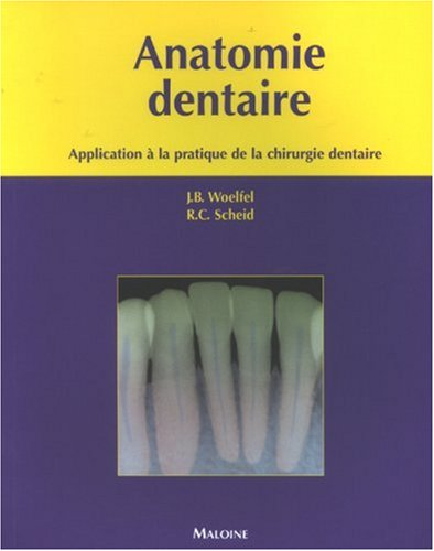 Anatomie dentaire : Application à la pratique de la chirurgie dentaire