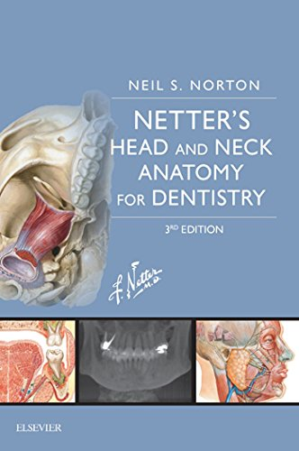 Netters Head And Neck Anatomy For Dentistry E Book Netter By Neil S Norton