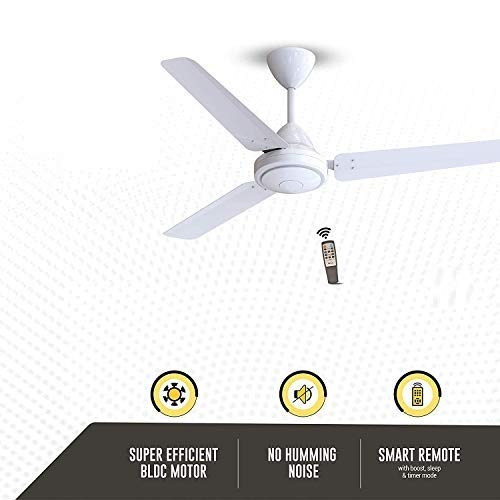 Efficio Energy Saving 5 Star Rated 3 Blade Ceiling Fan with Remote Control and BLDC Motor, 1200mm- White -