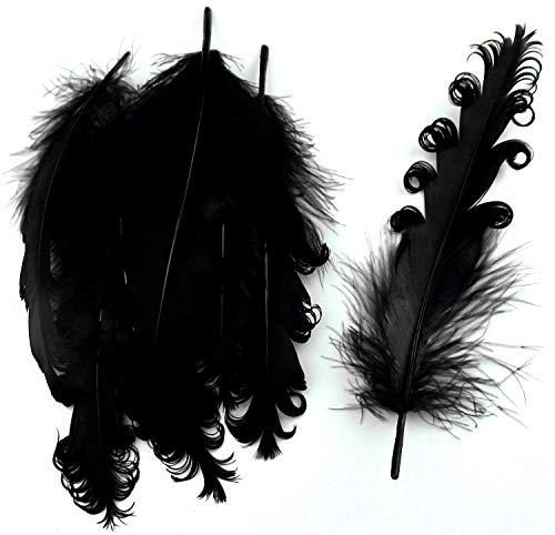 PANAX Echte extravagante Gänsefedern mit lockigen Spitzen in Schwarz - Federnlänge ca. 12-18cm - 16 Farbvarianten, Ideal zum Basteln, Dekorationen, Fasching, Karneval, Hochzeiten, ()