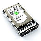 Dell HT954 300 GB SAS 15KRPM 3,5 Zoll (8,9 cm) mit Dell Tray (Zertifiziert generalüberholt)