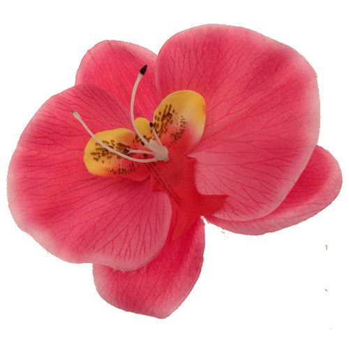 Acosta-rosa-fucsia-de-la-orqudea-Tropical-verano-diapositiva-de-pelo-del-Clip-FlorAccesorio-de-velo