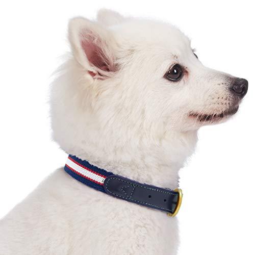 Blueberry Pet Klassisches Gestreiftes Basis Echtleder Hundehalsband in Navy Weiß und Rot, L, Hals 46cm-56cm