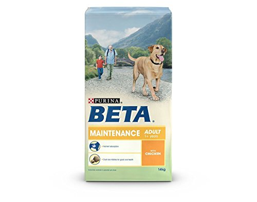 BETA Pet Maintenance with Chicken