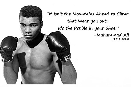[MY HOME]Ali boxing Poster ( BEST QUALITY POSTER SIZE : 30 CM X 45 CM )  available at amazon for Rs.149