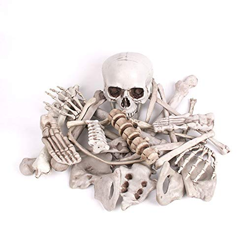 JNTM 28 Stück Skelett Knochen Und Schädel Für Halloween Dekor Und Gruseligsten Friedhof Szene Menschliches Skelett Halloween Prop Kunststoff Für Haus, Garten, Hof, Veranda, Bar (Friedhof Zombie Kostüm Kit)